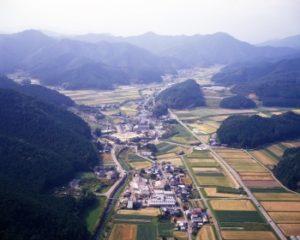 上空からの大山地区